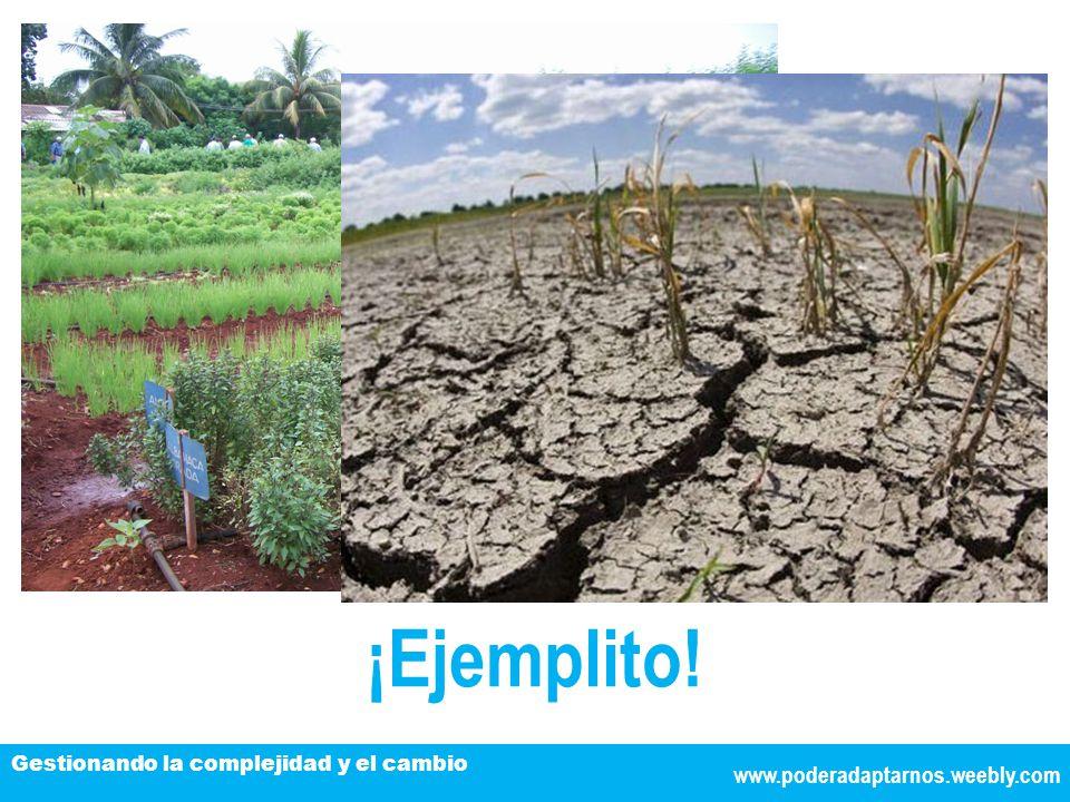 ¡Ejemplito! www.poderadaptarnos.weebly.com