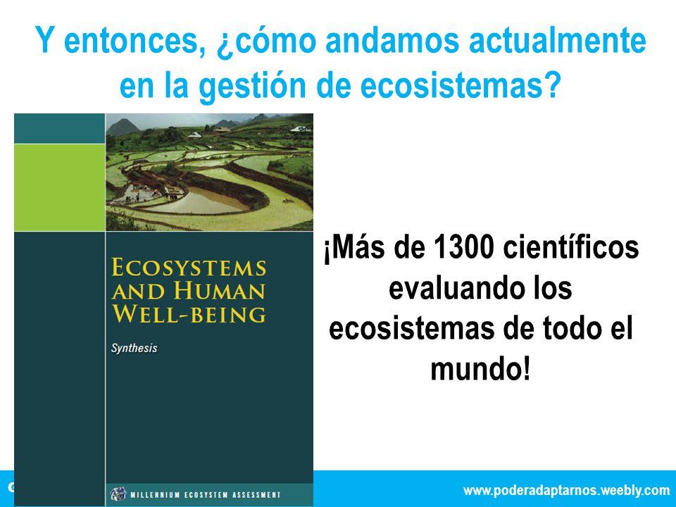 Y entonces, ¿cómo andamos actualmente en la gestión de ecosistemas