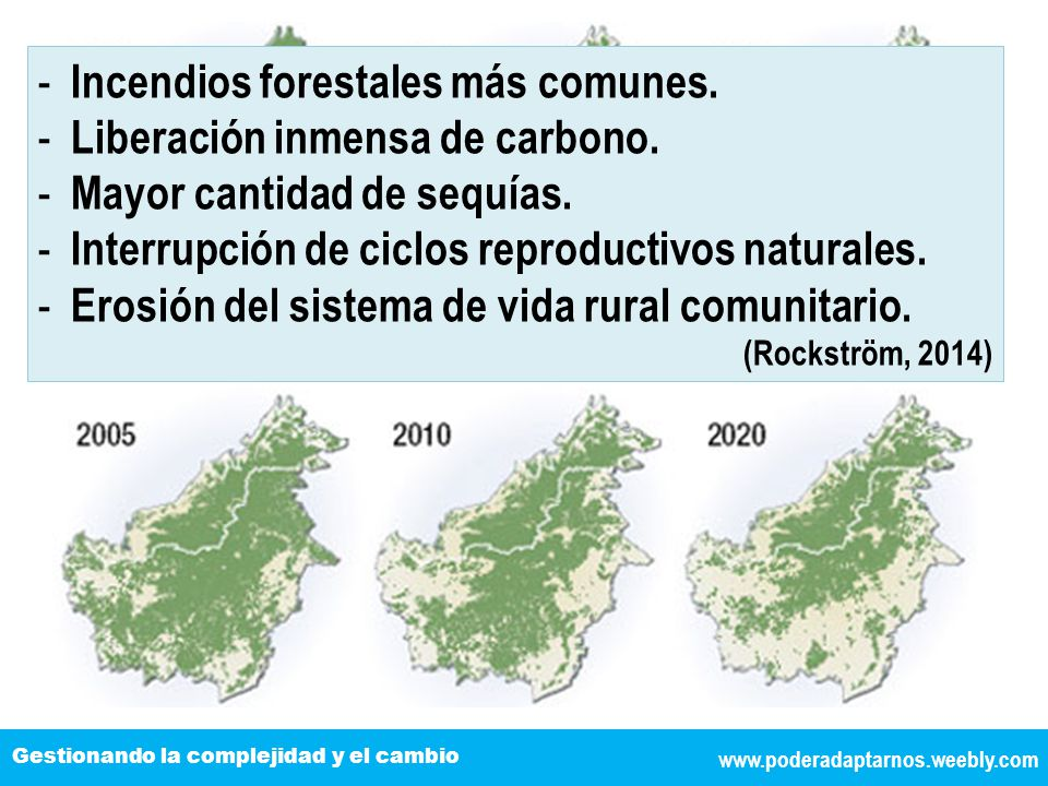 Incendios forestales más comunes. Liberación inmensa de carbono.