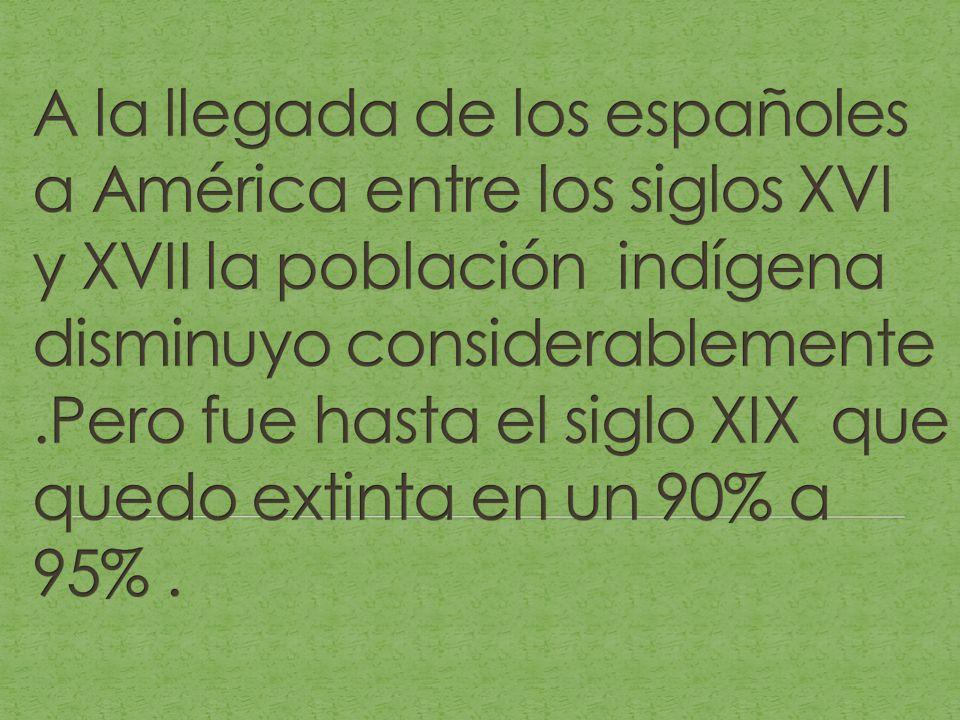 A la llegada de los españoles a América entre los siglos XVI y XVII la población indígena disminuyo considerablemente .Pero fue hasta el siglo XIX que quedo extinta en un 90% a 95% .