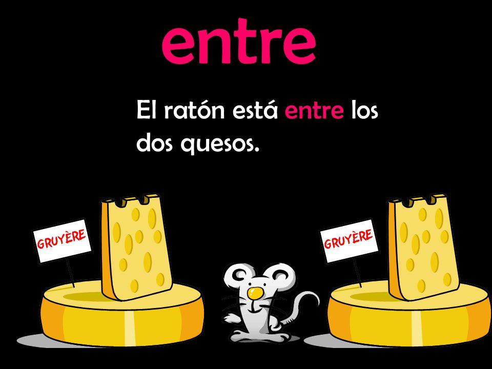 entre El ratón está entre los dos quesos.
