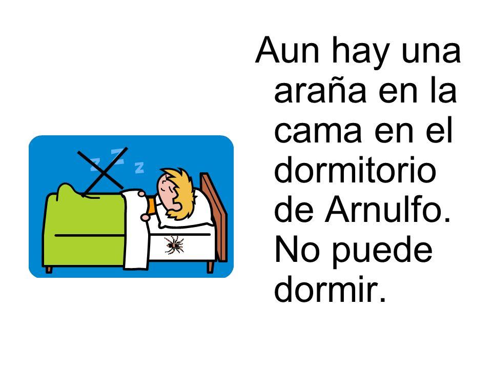 Aun hay una araña en la cama en el dormitorio de Arnulfo