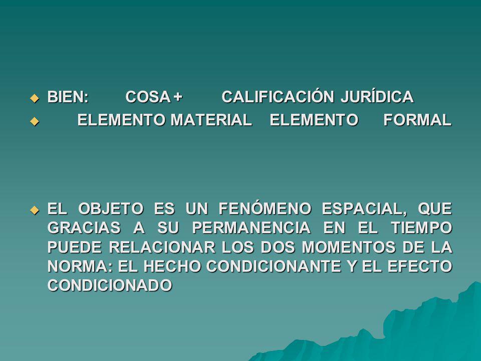 BIEN: COSA + CALIFICACIÓN JURÍDICA
