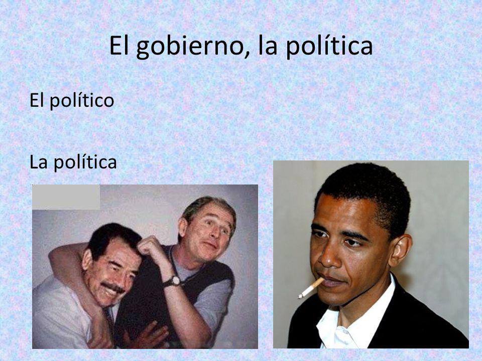 El gobierno, la política