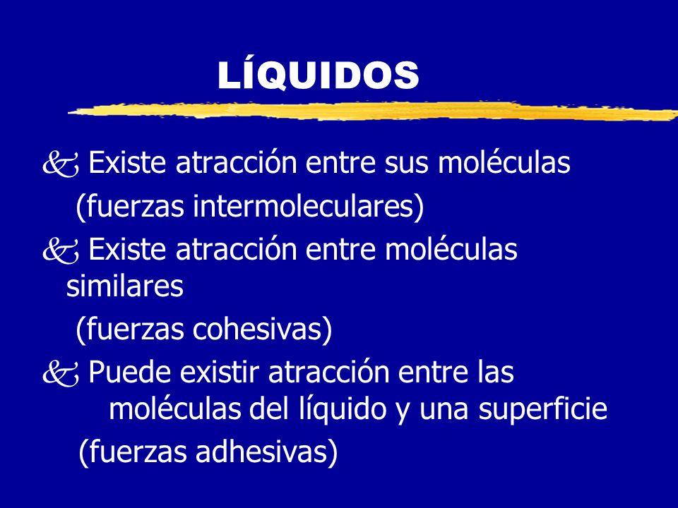 LÍQUIDOS Existe atracción entre sus moléculas