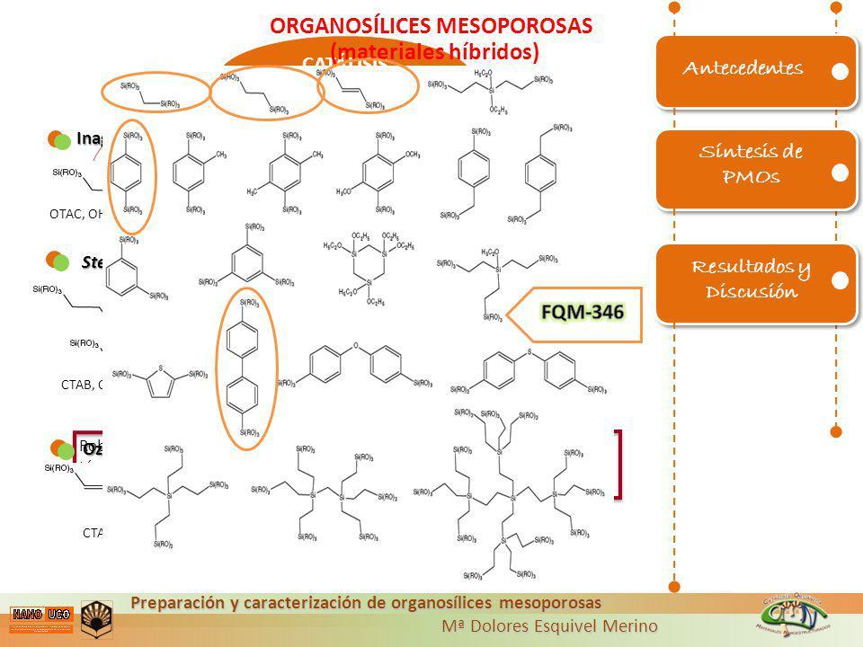 ORGANOSÍLICES MESOPOROSAS (materiales híbridos)