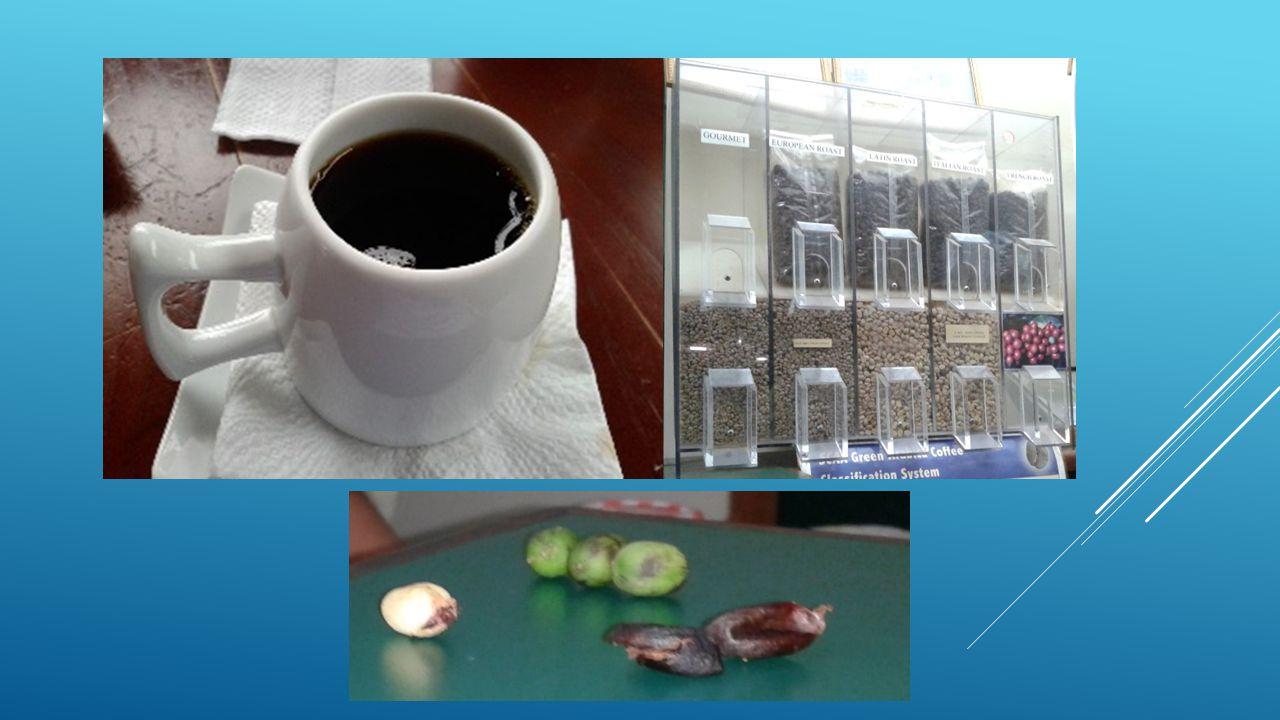 Los principales productos que se elaboran en esta industria es el café, sea en sus distintas variedades y formas (entiéndase café: en polvo, en grano, a la francesa, a la italiana, sobre calentado, verde, etcétera).