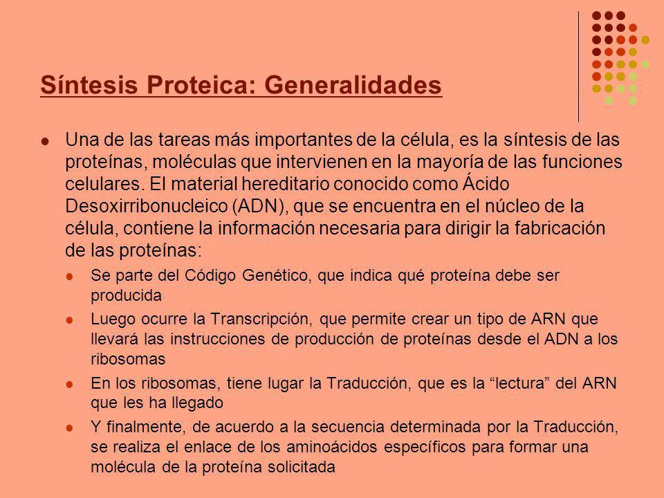 Síntesis Proteica: Generalidades