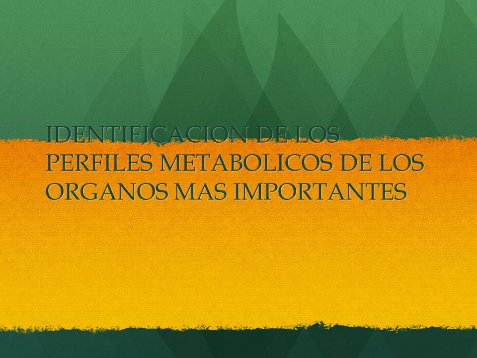 IDENTIFICACION DE LOS PERFILES METABOLICOS DE LOS ORGANOS MAS IMPORTANTES