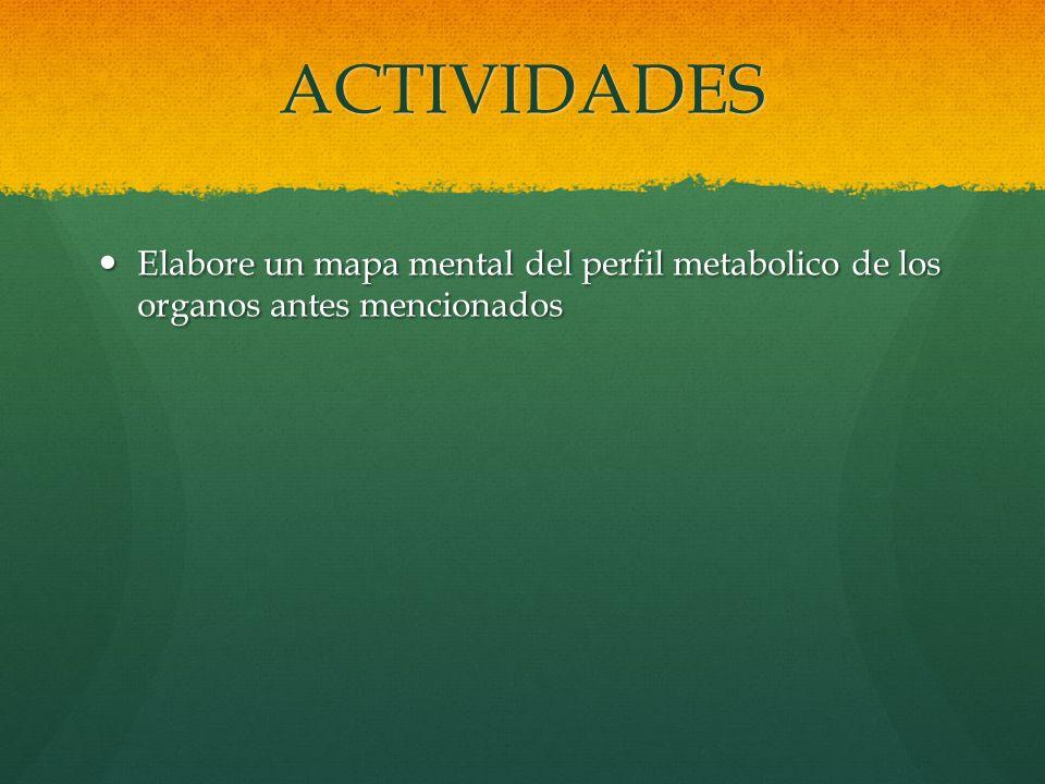ACTIVIDADES Elabore un mapa mental del perfil metabolico de los organos antes mencionados