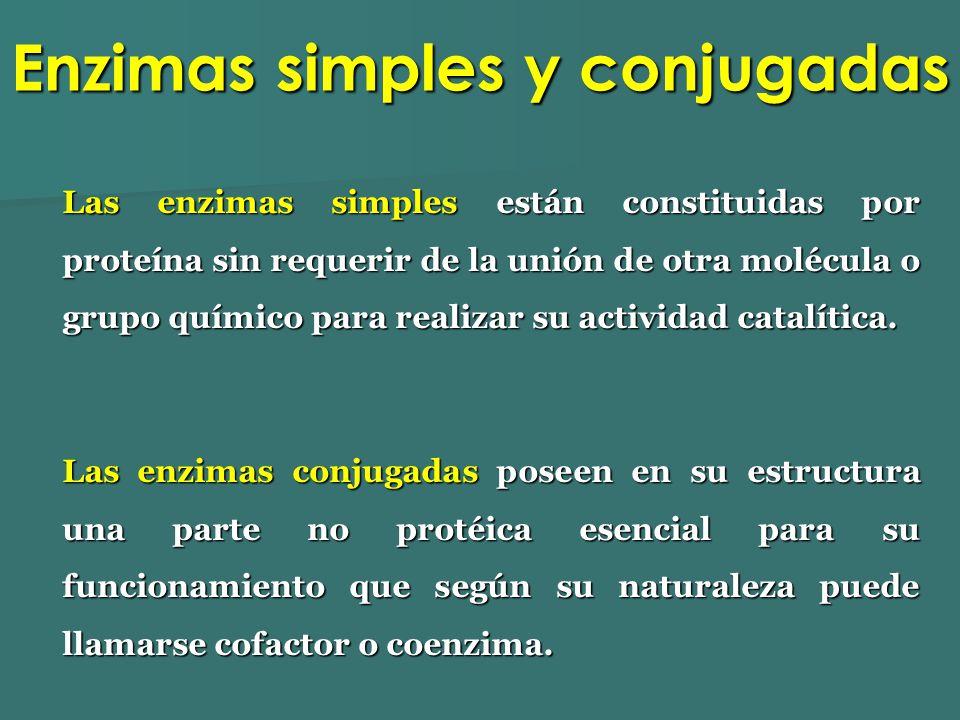Enzimas simples y conjugadas