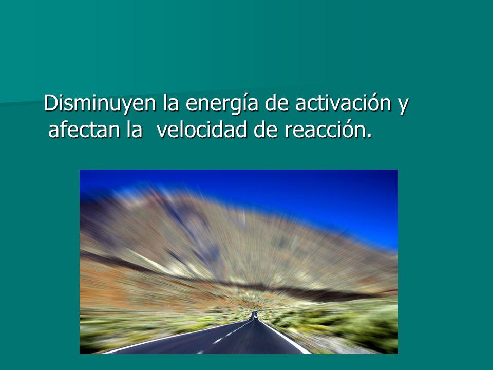 Disminuyen la energía de activación y afectan la velocidad de reacción.