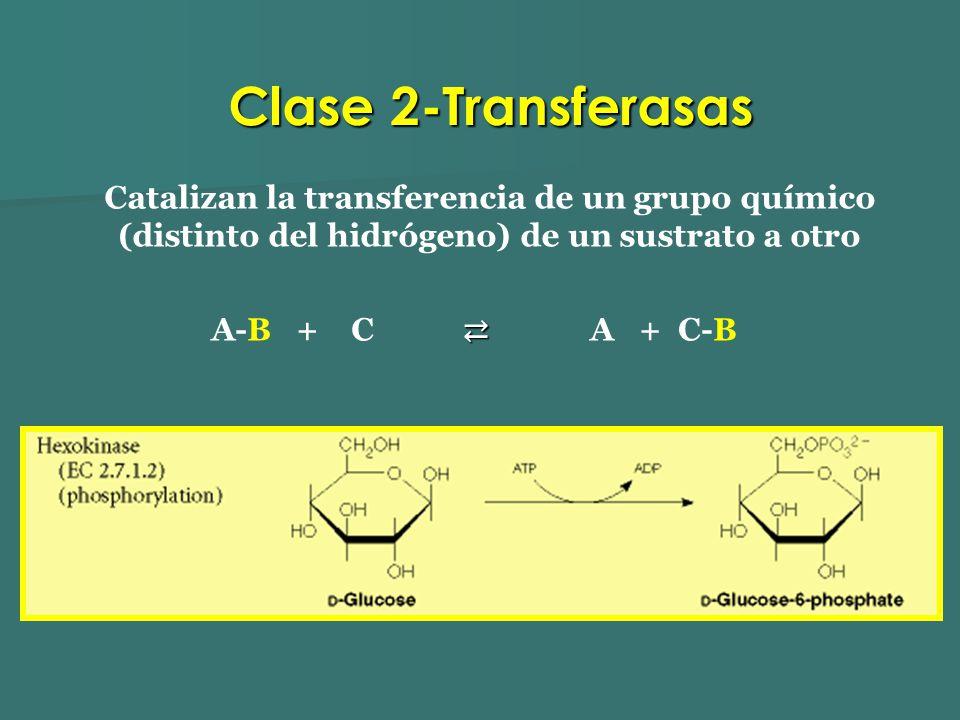 Clase 2-Transferasas Catalizan la transferencia de un grupo químico (distinto del hidrógeno) de un sustrato a otro.