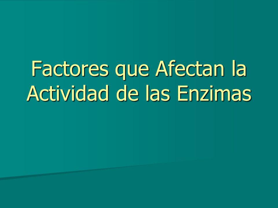 Factores que Afectan la Actividad de las Enzimas