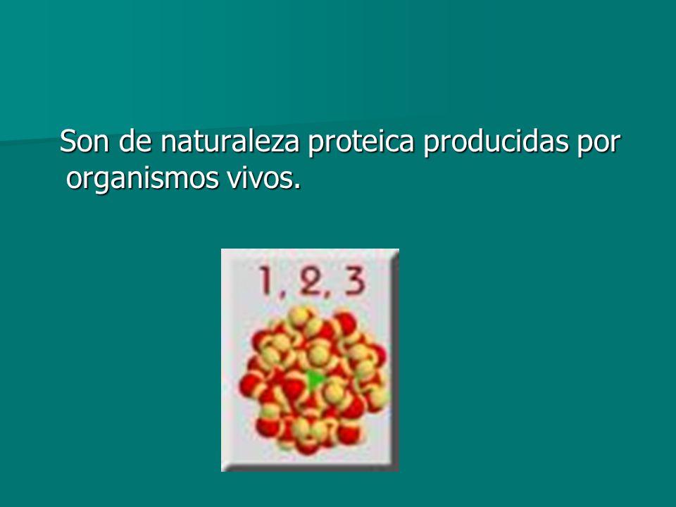 Son de naturaleza proteica producidas por organismos vivos.