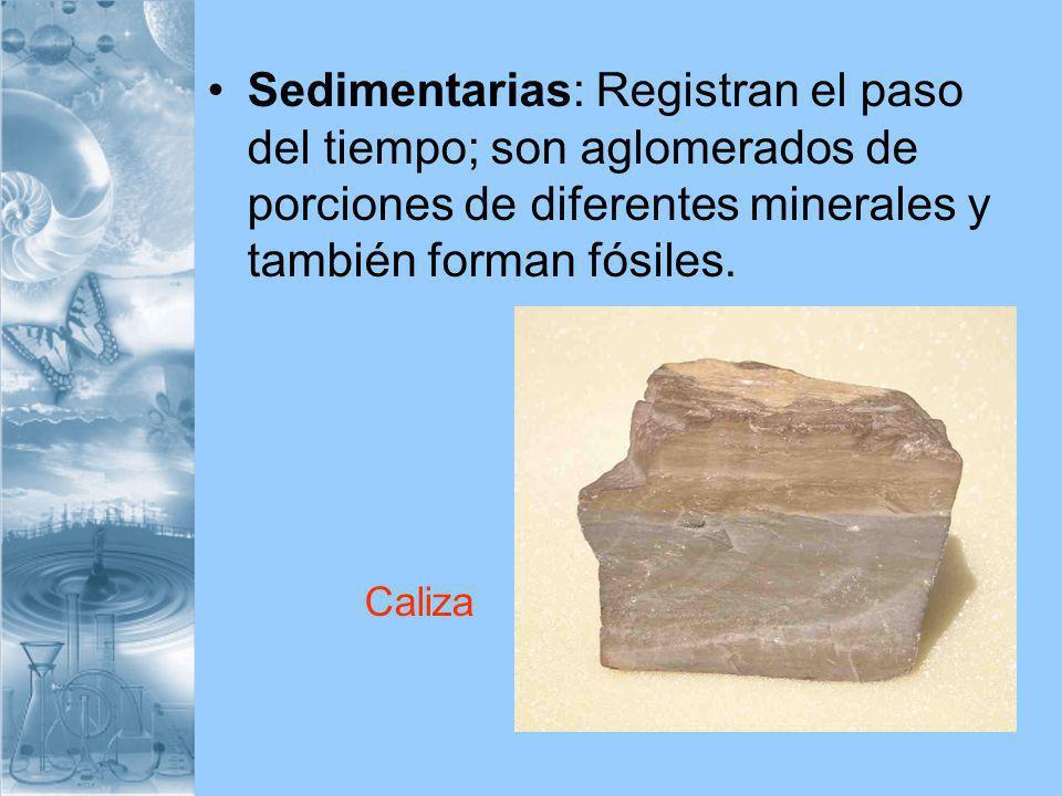 Sedimentarias: Registran el paso del tiempo; son aglomerados de porciones de diferentes minerales y también forman fósiles.