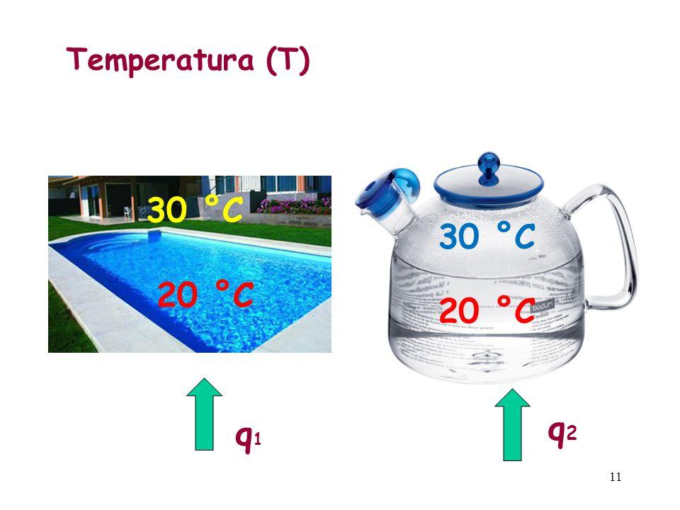 Temperatura (T) 30 °C 30 °C 20 °C 20 °C q2 q1