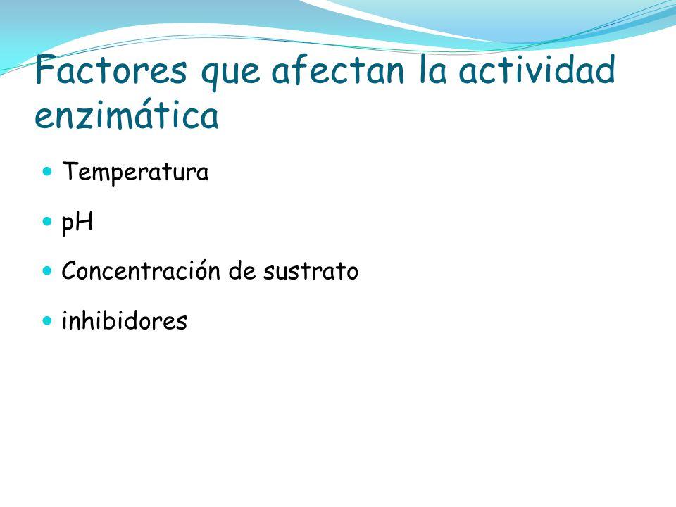 Factores que afectan la actividad enzimática