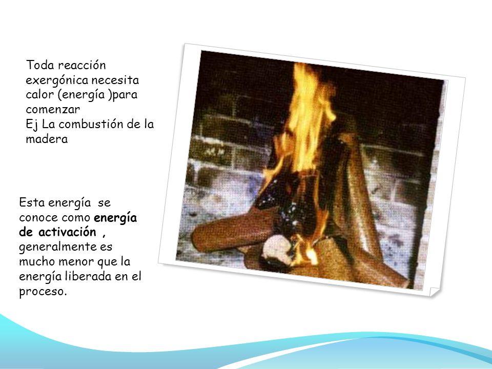 Toda reacción exergónica necesita calor (energía )para comenzar Ej La combustión de la madera
