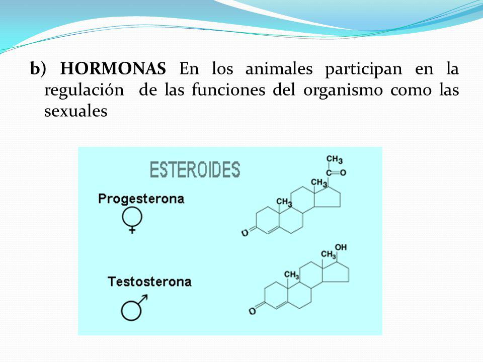 b) HORMONAS En los animales participan en la regulación de las funciones del organismo como las sexuales