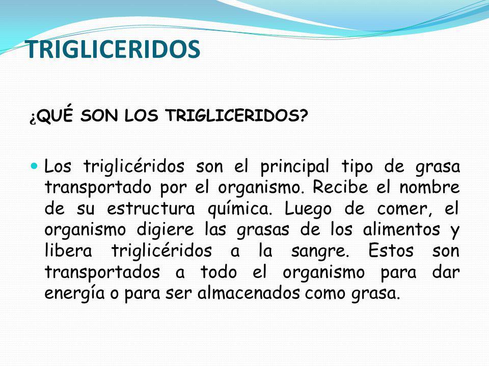 TRIGLICERIDOS ¿QUÉ SON LOS TRIGLICERIDOS