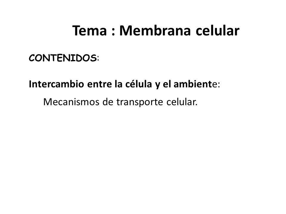 Tema : Membrana celular