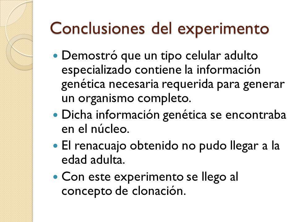 Conclusiones del experimento