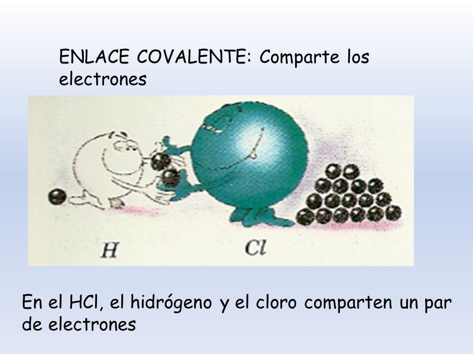 ENLACE COVALENTE: Comparte los electrones