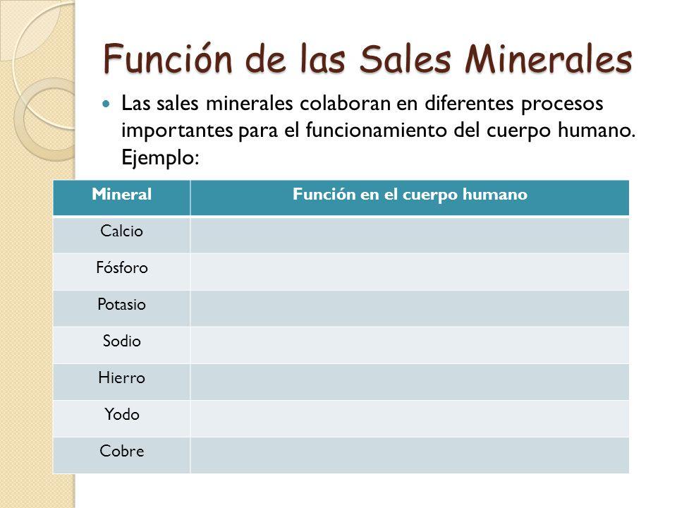 Función de las Sales Minerales