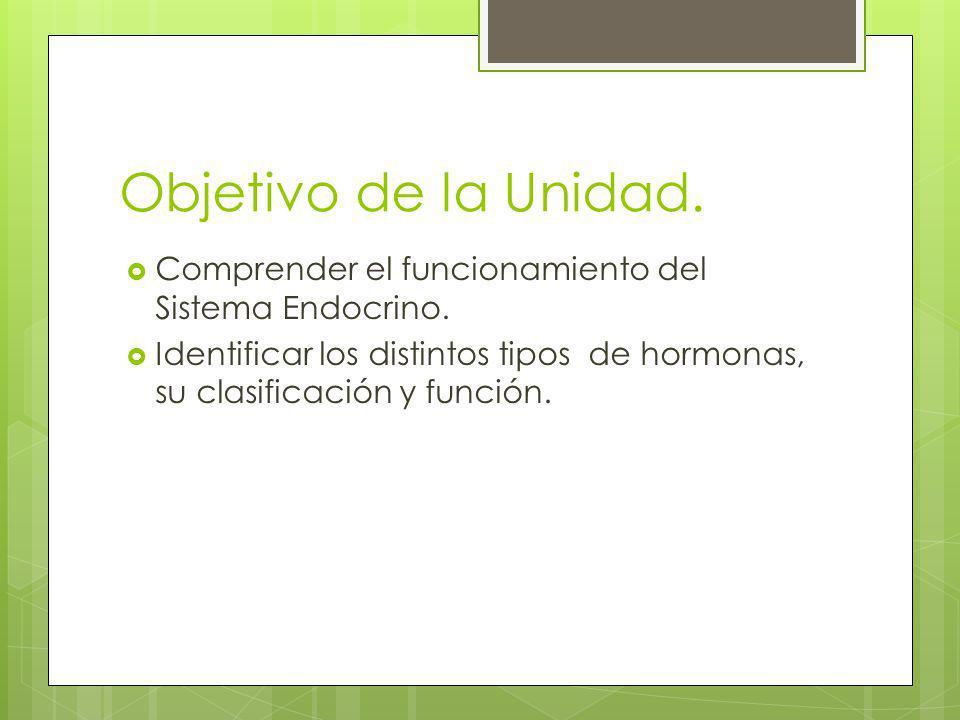 Objetivo de la Unidad. Comprender el funcionamiento del Sistema Endocrino.