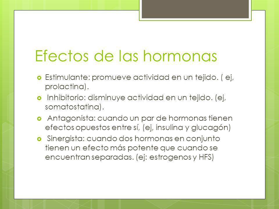 Efectos de las hormonas