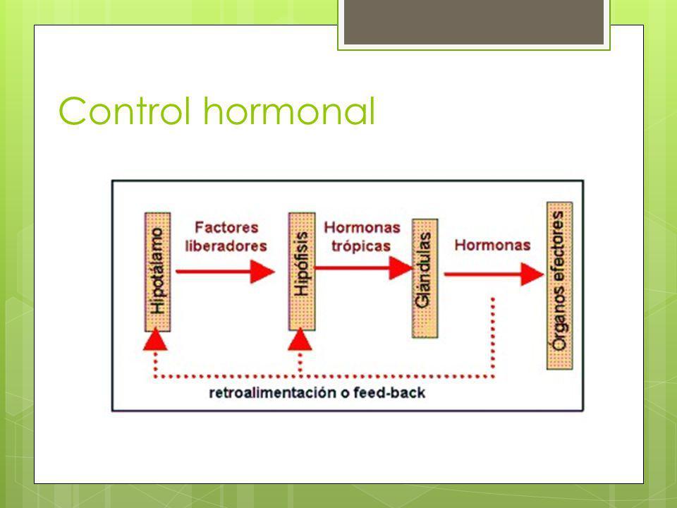 Control hormonal
