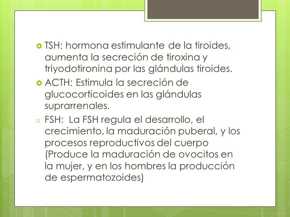 TSH: hormona estimulante de la tiroides, aumenta la secreción de tiroxina y triyodotironina por las glándulas tiroides.