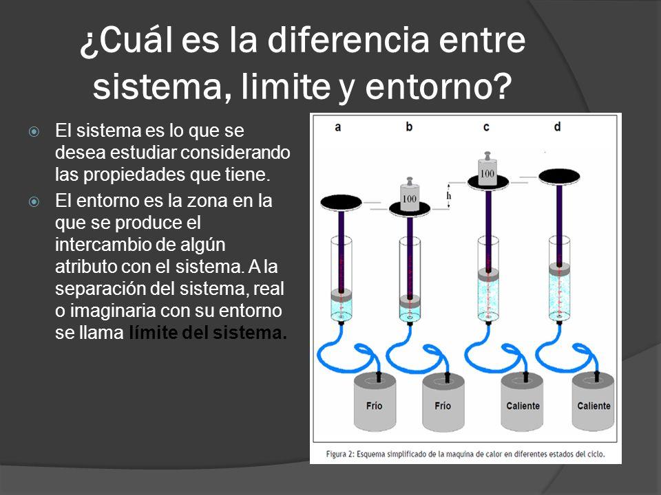¿Cuál es la diferencia entre sistema, limite y entorno