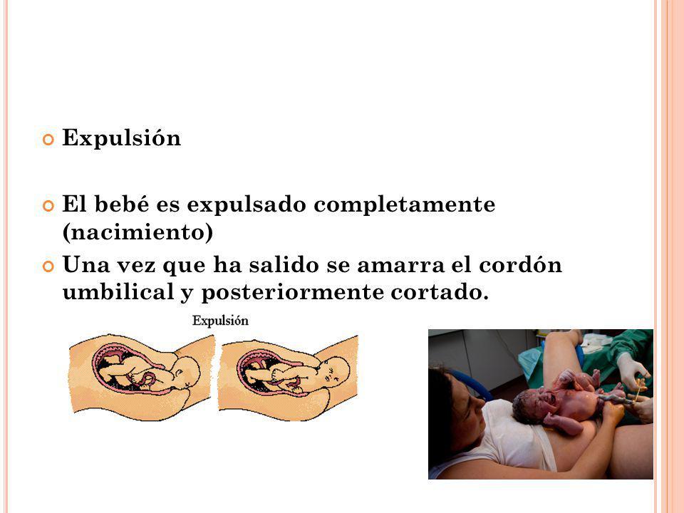 Expulsión El bebé es expulsado completamente (nacimiento) Una vez que ha salido se amarra el cordón umbilical y posteriormente cortado.