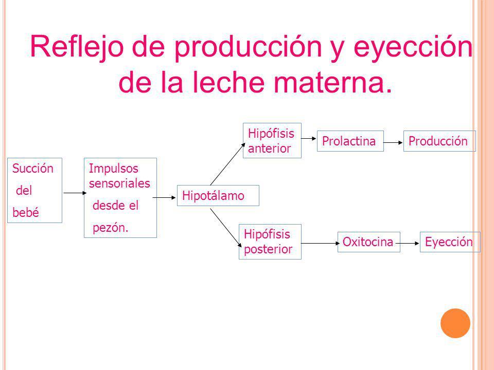 Reflejo de producción y eyección