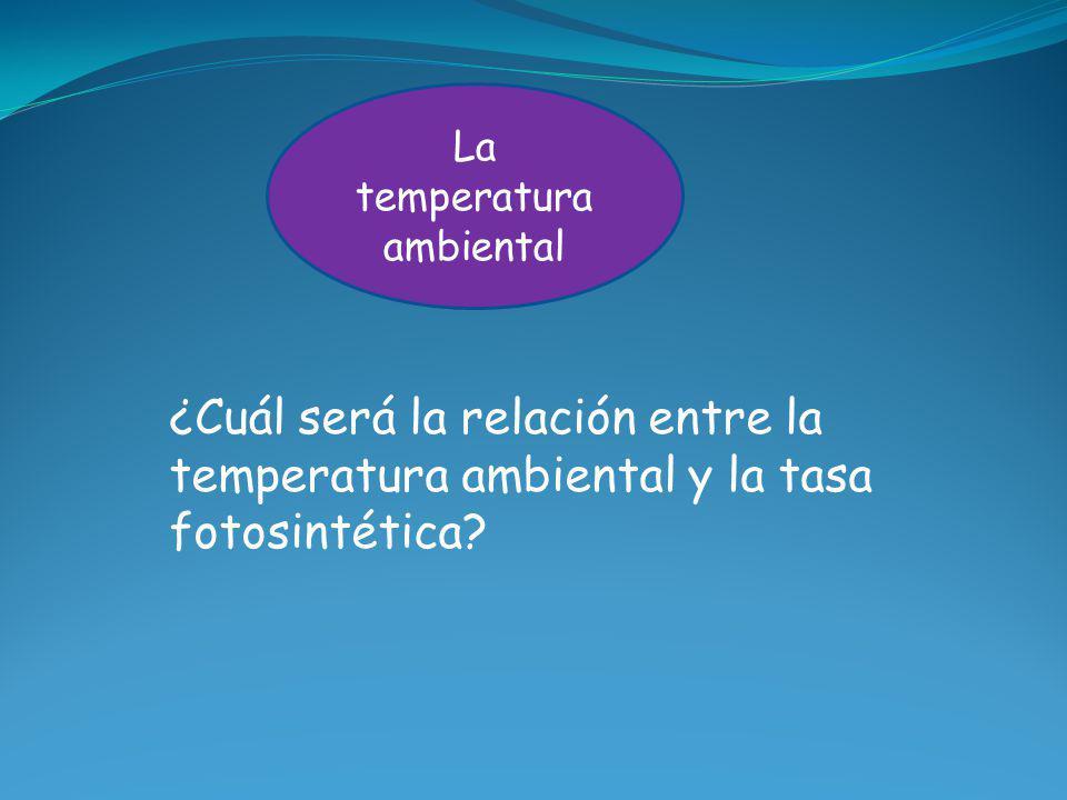 La temperatura ambiental