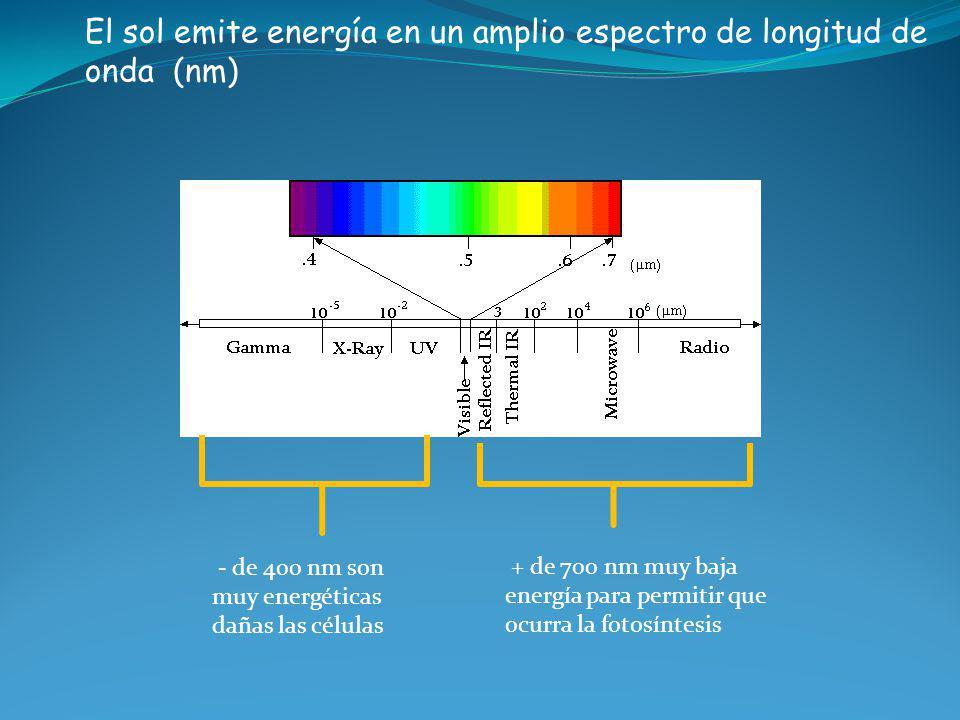 El sol emite energía en un amplio espectro de longitud de onda (nm)