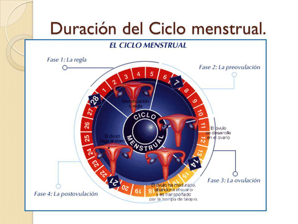 Duración del Ciclo menstrual.