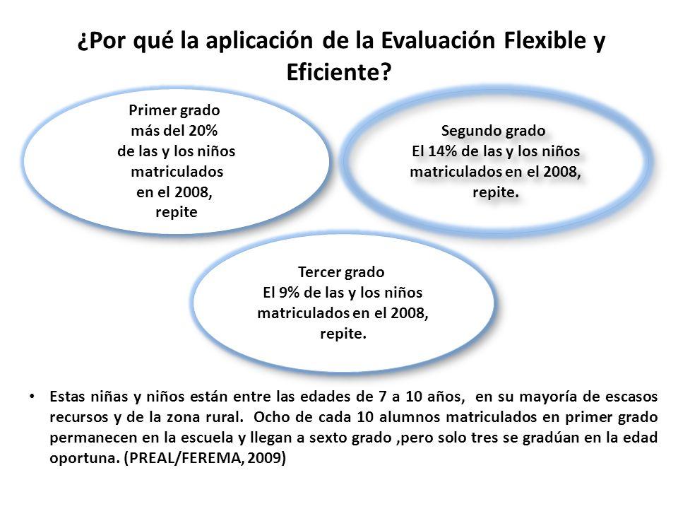 ¿Por qué la aplicación de la Evaluación Flexible y Eficiente