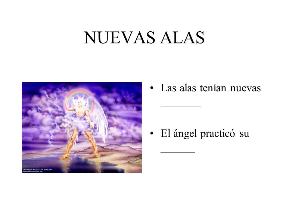 NUEVAS ALAS Las alas tenían nuevas _______ El ángel practicó su ______