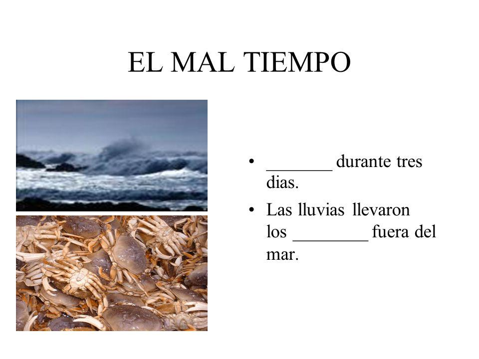 EL MAL TIEMPO _______ durante tres dias.