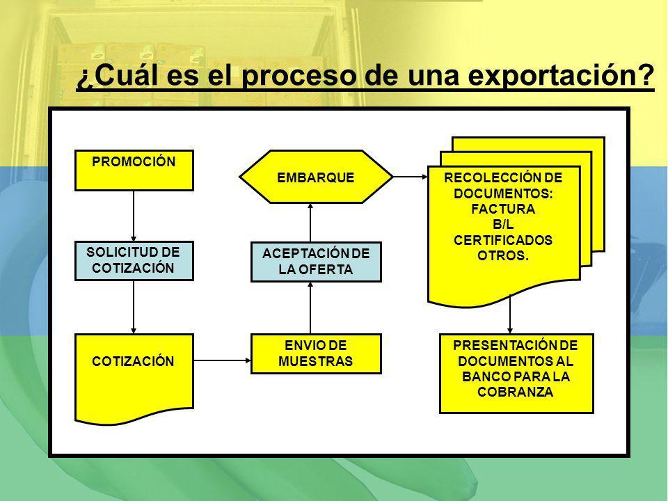 ¿Cuál es el proceso de una exportación