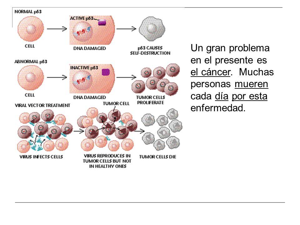 Un gran problema en el presente es el cáncer