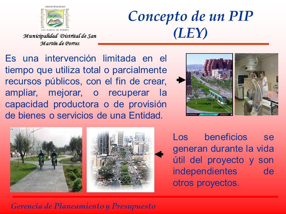 Concepto de un PIP (LEY)