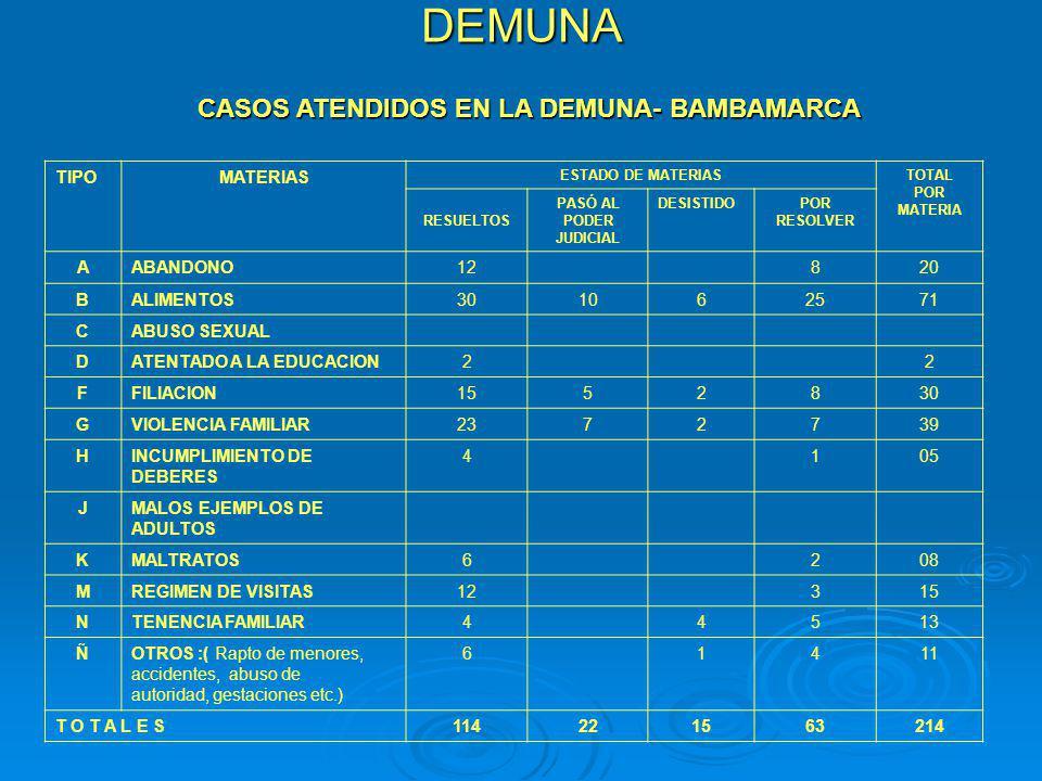 CASOS ATENDIDOS EN LA DEMUNA- BAMBAMARCA