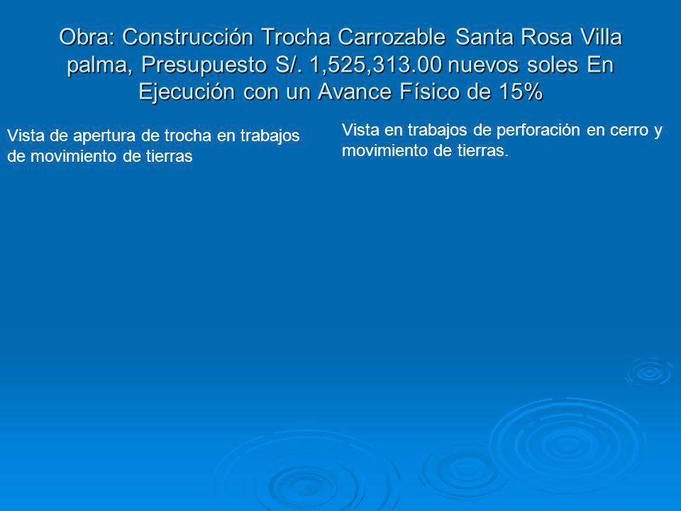 Obra: Construcción Trocha Carrozable Santa Rosa Villa palma, Presupuesto S/. 1,525,313.00 nuevos soles En Ejecución con un Avance Físico de 15%