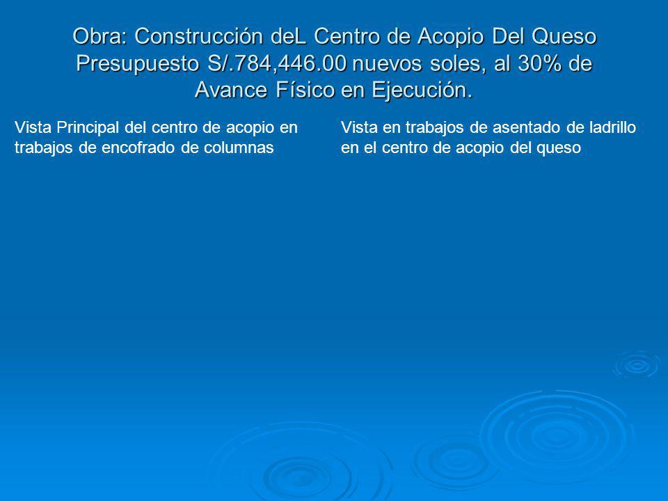 Obra: Construcción deL Centro de Acopio Del Queso Presupuesto S/