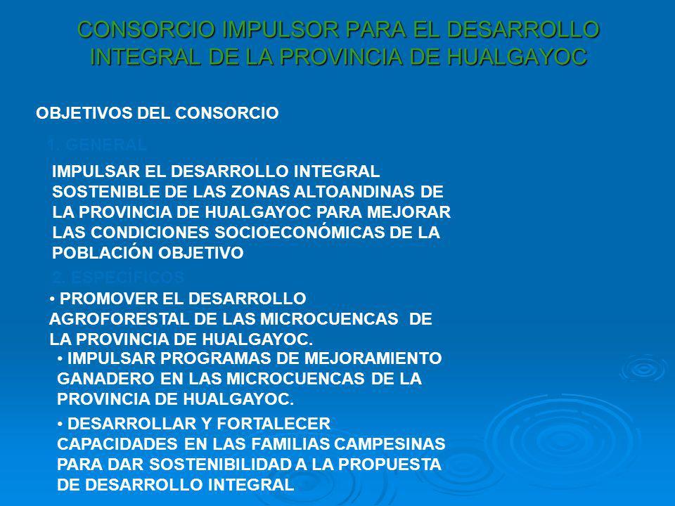 CONSORCIO IMPULSOR PARA EL DESARROLLO INTEGRAL DE LA PROVINCIA DE HUALGAYOC