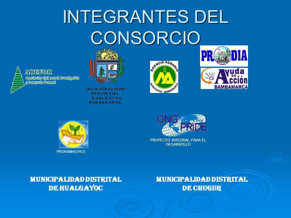 INTEGRANTES DEL CONSORCIO